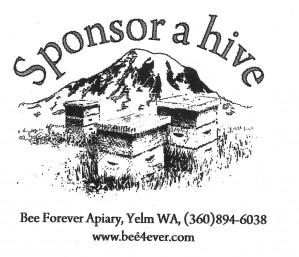 logo-sponsor-hive-with-mountain-gray-gross2